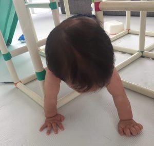 ジャングルジム 1歳児 0歳児 白いわんぱくジム 比較 掃除 ルンバ ブログ
