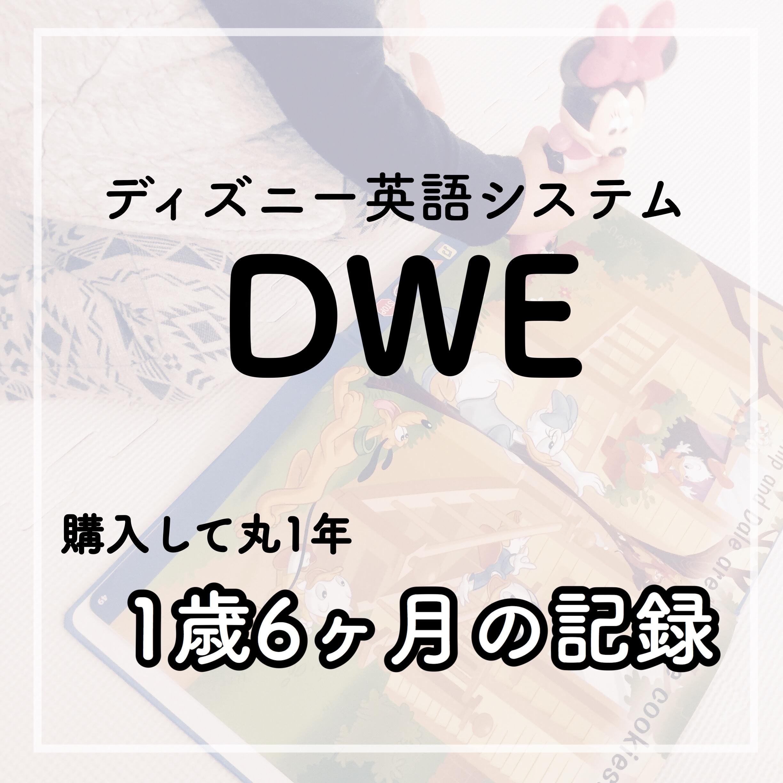DWE 成果 効果 1年 1歳児 0歳児